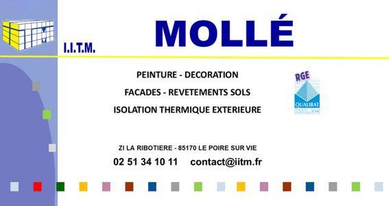 Logo complet IITM Molle Peinture